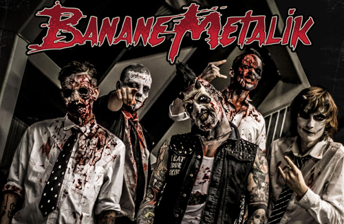 Live: BANANE METALIK, BLATOIDEA